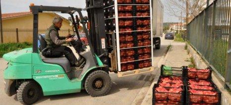 Εγκαίρως έγιναν οι αιτήσεις για την επισιτιστική βοήθεια από τις ομάδες παραγωγών, σύμφωνα με τον Σηφάκη