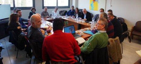 Δίκτυο για στοχευμένη έρευνα στην αποκρυπτογράφηση του DNA της ελληνικής ελιάς