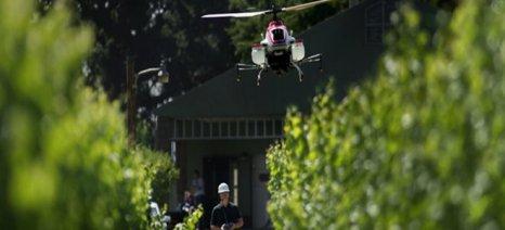 Αναδάσωση με τη χρήση drones