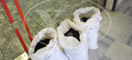 Σακιά με κοπριά άφησαν στην είσοδο της ΔΟΥ Χανίων οι αγρότες