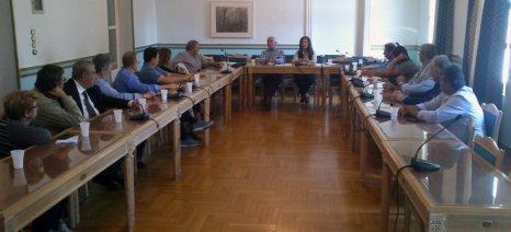 Προληπτική σύσκεψη για τα πυρηνελαιουργεία στην περιφέρεια Πελοποννήσου