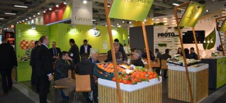 Συνολικά 71 επιχειρήσεις και συνεταιρισμοί από την Ελλάδα συμμετείχαν στη φετινή Fruit Logistica του Βερολίνου