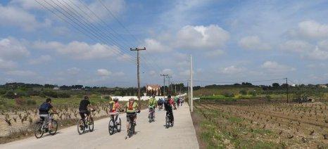 Τρία οινοποιεία, πέντε οινογνωσίες, μία περιπέτεια με ποδήλατο