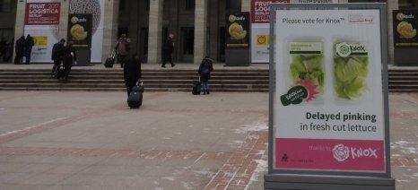Το βραβείο καινοτομίας της Fruit Logistica κέρδισε το Knox της Rijk Zwaan