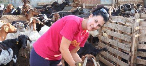 Μία νέα κτηνοτρόφος παντρεμένη με τα... γίδια της