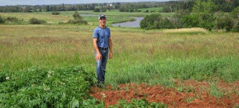 Τριάντα οι περιοχές μείωσης της νιτρορύπανσης - Τα ποσά των ενισχύσεων για τις επιλέξιμες καλλιέργειες