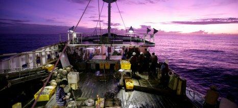 Οδηγός της Greenpeace για μία Δίκαιη Αλιεία και κατανάλωση θαλασσινών