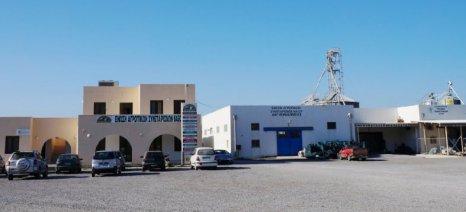 Η ΕΑΣ Νάξου ευχαριστεί τη Blue Star Ferries και την ΕΡΜΗΣ για τη δωρεάν μεταφορά των προϊόντων της για φιλανθρωπικό σκοπό
