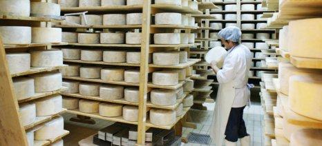 Κτηνίατροι, πωλητές λαϊκών αγορών και άλλοι τρεις ΚΑΔ παραγωγής τροφίμων εντάσσονται στα μέτρα στήριξης