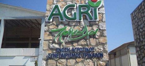 Προσλήψεις εργαζομένων ενόψει εκκοκκιστικής περιόδου από την ΕΑΣ Τρικάλων