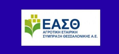Διαγωνισμός της ΑΕΣ Θεσσαλονίκης για το πρόγραμμα προώθησης ρυζιού σε Ιορδανία, Λίβανο και ΗΑΕ