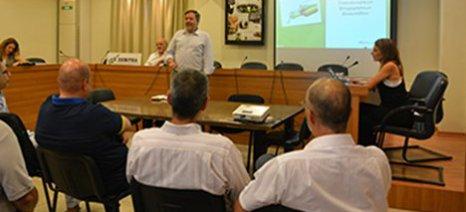 Όλες οι προτάσεις για την ενίσχυση του προφίλ του τυποποιημένου ελαιολάδου συζητήθηκαν σε ημερίδα του ΣΕΒΙΤΕΛ