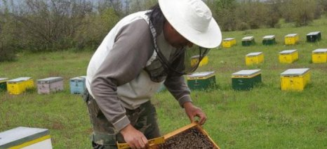Σεμινάριο πυροπροστασίας από τον Σύλλογο Μελισσοκόμων Καρδίτσας