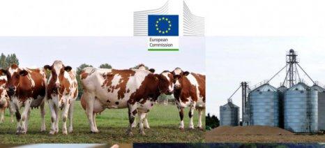 «Ευάλωτη» άνοδο κατά 6% στο αγροτικό εισόδημα προβλέπει η Κομισιόν έως το 2024