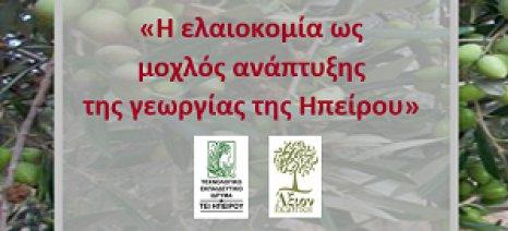 Ημερίδα για την ελαιοκομία ως μοχλό ανάπτυξης της γεωργίας στην Ήπειρο στις 11 Απριλίου