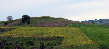 Κρυφή μελέτη της Κομισιόν αποκαλύπτει ότι υπάρχουν καλώς και κακώς παραγόμενα βιοκαύσιμα από καλλιέργειες