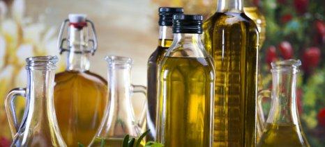 «Σάρωσε» τα βραβεία η Ελλάδα για το ελαιόλαδο και το μέλι σε διεθνείς διαγωνισμούς στο Λονδίνο