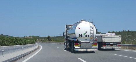 Πρώτο το ελαιόλαδο σε εξαγωγές προς την Ιταλία, με αξία 281,2 εκατ. ευρώ