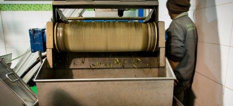 Τριπλοί έλεγχοι στα ελαιοτριβεία της Λέσβου για κατσίγαρο και εργαζόμενους