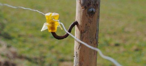 Χρηματοδότηση κατά 100% από το νέο ΠΑΑ για την εγκατάσταση ηλεκτροφόρου περίφραξης