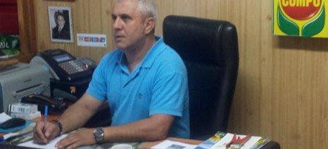 Η καλλιέργεια της πατάτας στην Κοζάνη επεκτείνεται και οργανώνεται