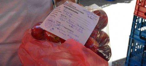 Αιφνιδιαστικοί έλεγχοι στο Ναύπλιο για υπολλείμματα γεωργικών φαρμάκων