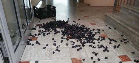 Διαμαρτυρόμενοι αγρότες έριξαν ελιές στα γραφεία του ΕΛΓΑ στο Αγρίνιο