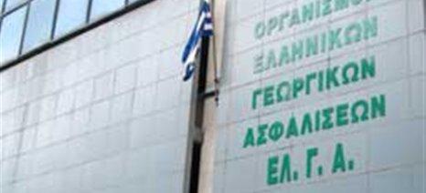 Μέχρι τις 5 Αυγούστου μαζική πληρωμή αποζημιώσεων από τον ΕΛΓΑ, σύμφωνα με βουλευτές του ΣΥΡΙΖΑ