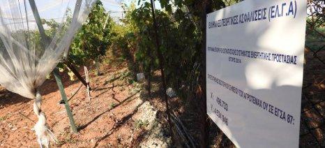 Συνολικά 422 οι αγρότες που θα επωφεληθούν από το πρόγραμμα εγκατάστασης αντιχαλαζικών διχτυών του ΕΛΓΑ