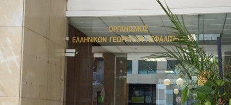 """Νέα """"παρτίδα"""" αποζημιώσεων ύψους 20,4 εκατ. ευρώ θα καταβάλλει τη Μ. Πέμπτη ο ΕΛΓΑ"""