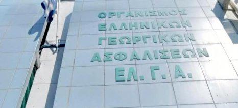 Υποβολή προσωρινής δήλωσης ζημιάς για τον παγετό της 17ης Μαρτίου στην Αριδαία έως τις 4 Μαΐου