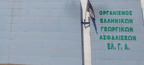 Αύριο πληρώνει ο ΕΛΓΑ 3,1 εκατ. ευρώ από ΠΣΕΑ του 2011 και του 2012 - στο νομό Ηρακλείου τα μισά
