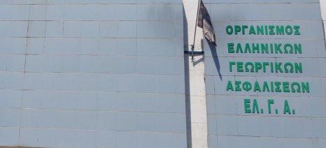 Αποζημιώσεις ύψους 20,5 εκατ. ευρώ πληρώνει ο ΕΛΓΑ αύριο Τετάρτη