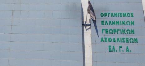 Μέχρι 22 Μαρτίου οι ενστάσεις για τα πορίσματα του ΕΛΓΑ στα Γιαννιτσά