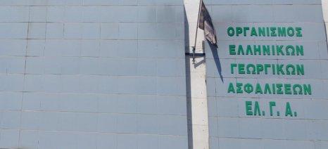 Αποζημιώσεις 6 εκατ. ευρώ και ΠΣΕΑ 490 χιλ. ευρώ θα πληρώσει αύριο ο ΕΛΓΑ