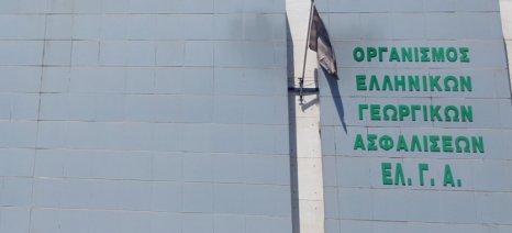 Έκανε δεκτές τις εκπρόθεσμες δηλώσεις ζημιάς για παγετό ο ΕΛΓΑ σε Πέλλα και Ημαθία