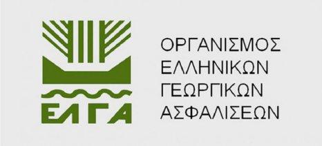Νέα παράταση πληρωμής εισφορών ΕΛΓΑ έτους 2018, έως τις 30 Σεπτεμβρίου 2019