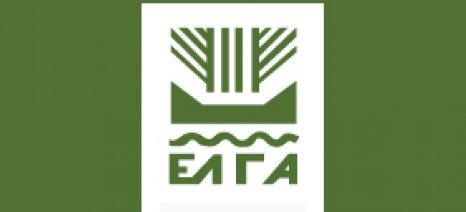 Αναγγελία ζημιάς στον ΕΛΓΑ από παραγωγούς στον Δήμο Πλατανιά