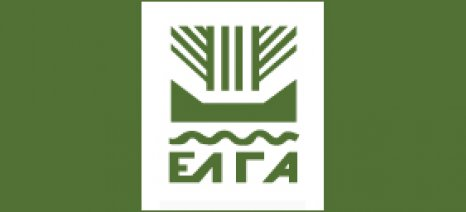 Πληρωμές σήμερα και αύριο από τον ΕΛΓΑ συνολικού ύψους 3,24 εκατ. ευρώ