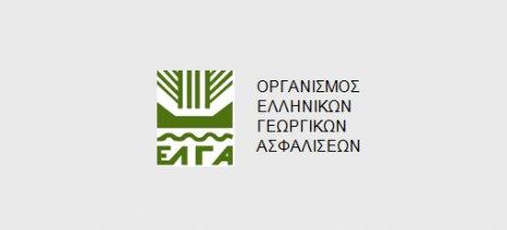 Πληρωμή αποζημιώσεων ύψους 7 εκατ. ευρώ σήμερα από τον ΕΛΓΑ