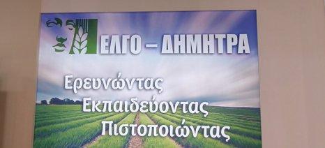 """Προκήρυξη από τον ΕΛΓΟ """"Δήμητρα"""" για 142 υπεύθυνους κατάρτισης Νέων Αγροτών - αιτήσεις έως 22 Οκτωβρίου"""