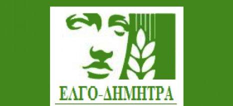 Νέα πρόστιμα και κυρώσεις σε τυροκομεία από τον ΕΛΓΟ-ΔΗΜΗΤΡΑ