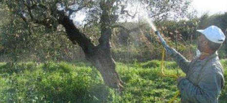 Ψεκασμός ελαιώνων κατά του δάκου σε Αγρίνιο και Μεσολόγγι