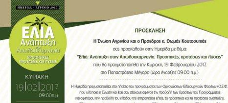 Ημερίδα για την ελαιοκαλλιέργεια οργανώνει η Ένωση Αγρινίου στις 19 Φεβρουαρίου