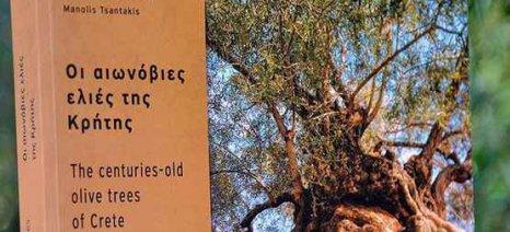 «Οι αιωνόβιες ελιές της Κρήτης» σε βιβλίο