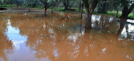 Τεράστιο πλήγμα για Αιτωλοακαρνάνες παραγωγούς από τη συνεχιζόμενη κακοκαιρία