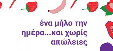 """""""Εργαστήρι"""" στη Θεσσαλονίκη για τη σωστή διαχείριση των τροφίμων από τους καταναλωτές στις 11 Φλεβάρη"""