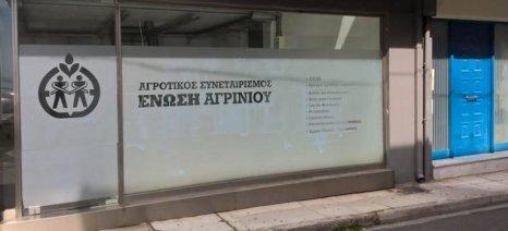 Εγγραφές μελών σε δύο νέες ομάδες παραγωγών επιτραπέζιας ελιάς της Ένωσης Αγρινίου