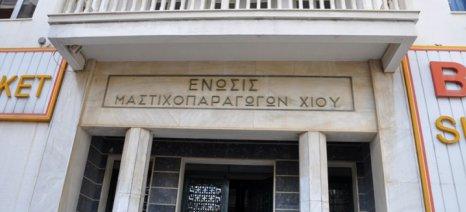 Μέρισμα 4,14 ευρώ ανά κιλό διανέμει στους μαστιχοπαραγωγούς η Ένωση
