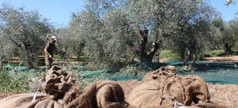 Λιγότερες κατά 2.500 οι αγροτικές επιδοτήσεις το 2017 στη Μεσσηνία